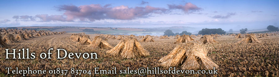 Hills of Devon - South West supplier of water reed